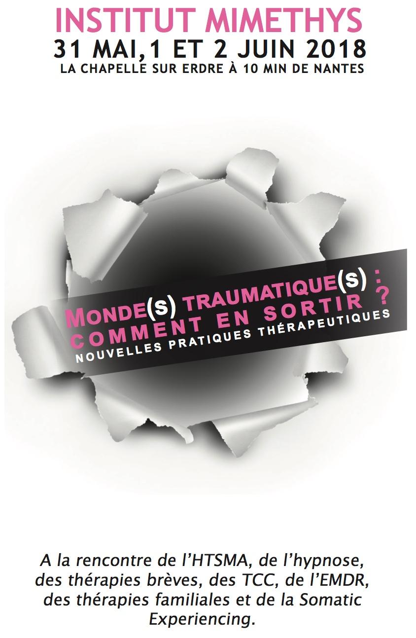Pr Michel Schittecatte Apport de la Théorie Poly- vagale des Emotions de Stephen Porges. Nantes les  1 er et 2 juin 2018